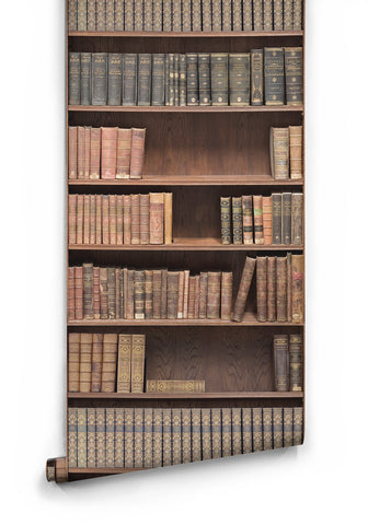 Bookshelf Library Wallpaper