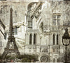 Vintage View of Notre-Dame de Paris Mural