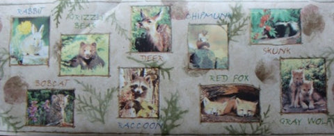 Baby Forest Animals Wallpaper Border