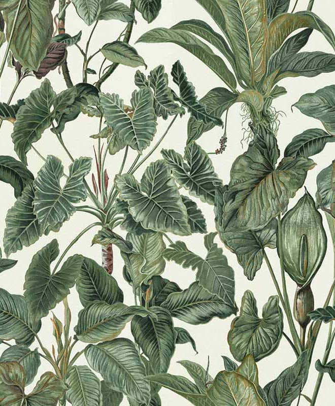Paradisio Tropical Jungle Leaves Wallpaper Brokers Melbourne Wallpaper Brokers Are you looking for tropical jungle design images templates psd or png vectors files? wallpaper brokers
