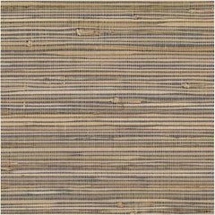 Sand & Blue Beachy Weave Grasscloth Seagrass