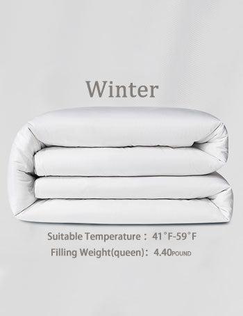 Winter Silk Comforter