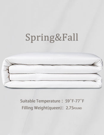 Spring and Fall Silk Comforter