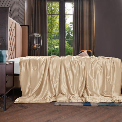 Top Grade 7A | Silk Filled Blanket with Silk Cover | Sofa Throw | 10 Colors