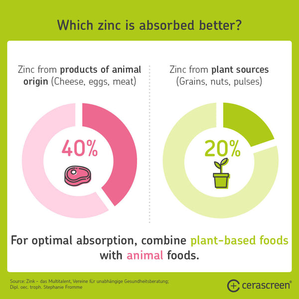 Foods with zinc – where is zinc absorbed better