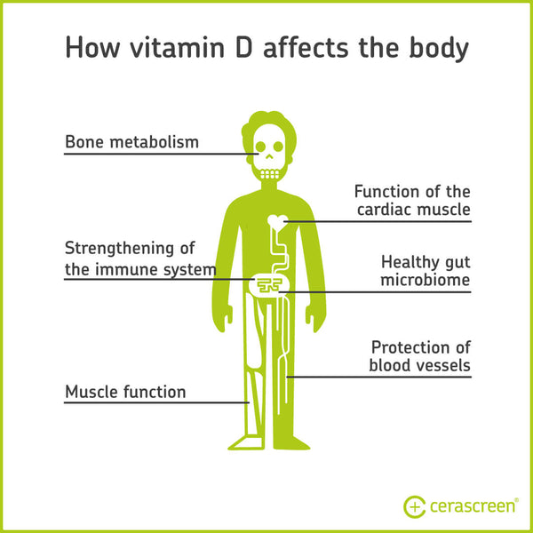 How Vitamin D affects the body