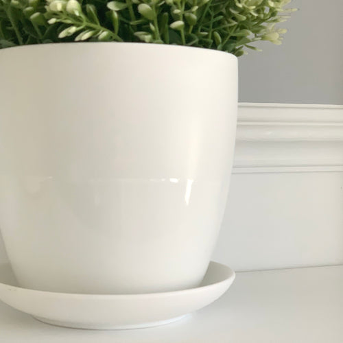 White Dyad Pot and Saucer