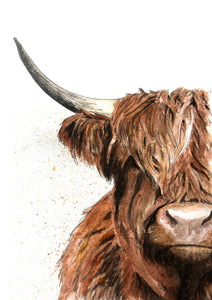 Ellie Baarda - Highland Cow Watercolour and Ink Painting by Yorkshire Artist