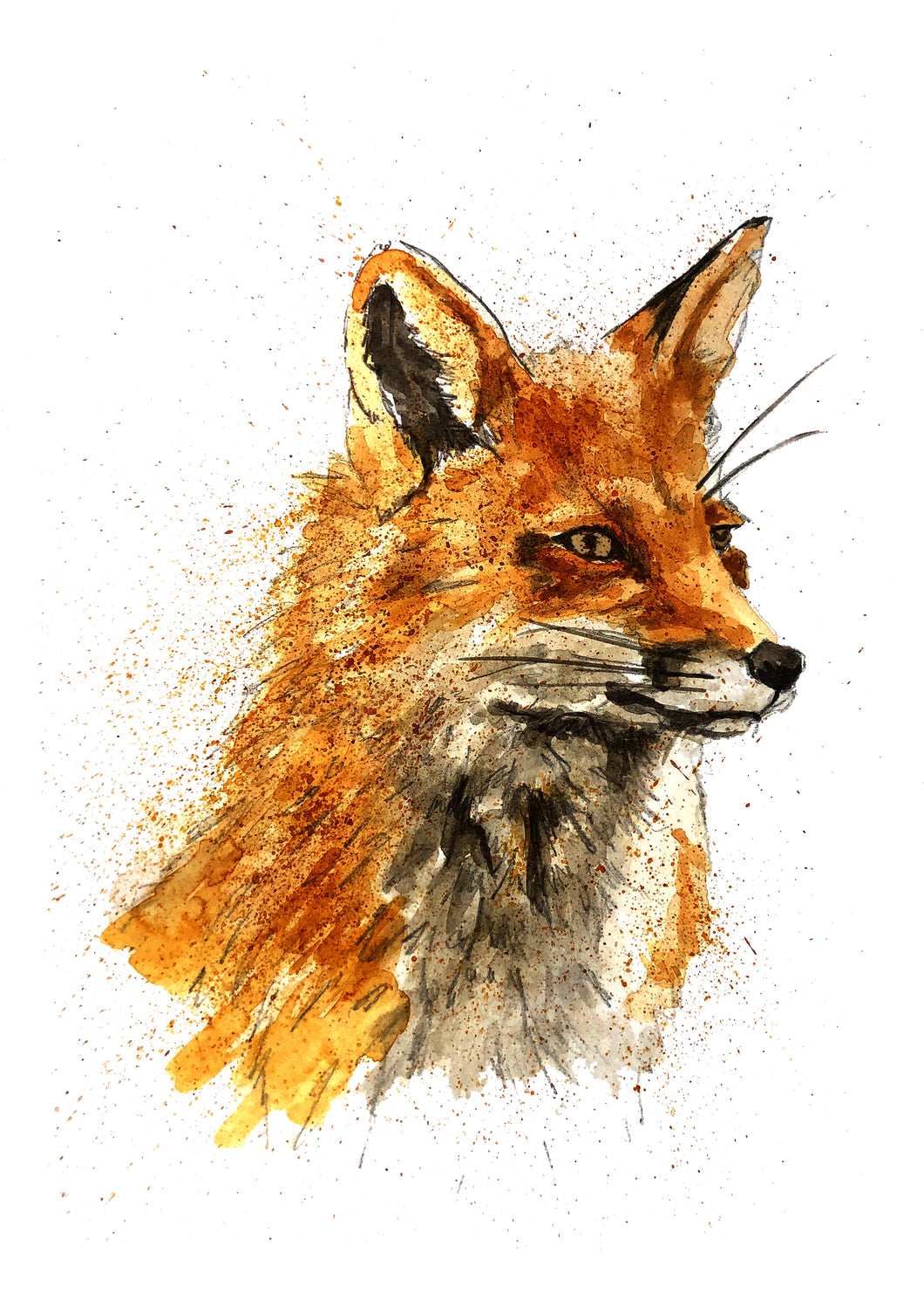 Ellie Baarda - Fox Print Watercolour and Ink drawing by Yorkshire Artist