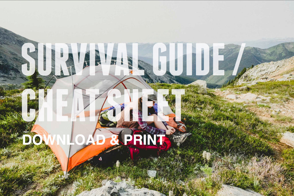 Limitless Equipment | Survival Guide for download and printout