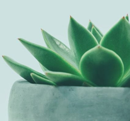 Be The First To Hear