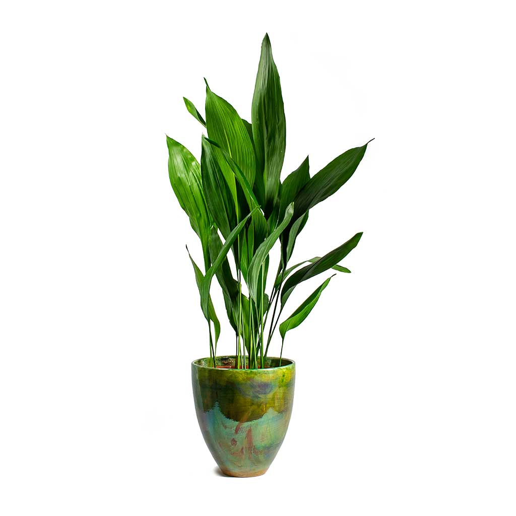 Livin' Beauty Flowerpot - Copper Green Smooth 15cm