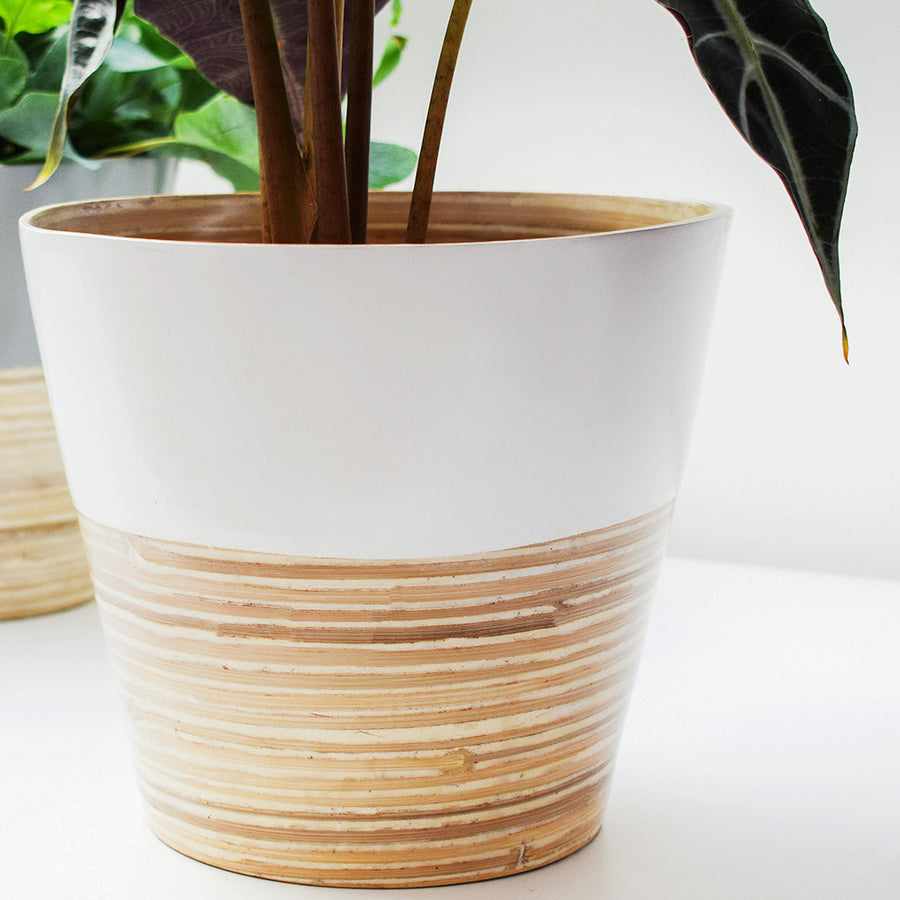Bamboo Planter - White