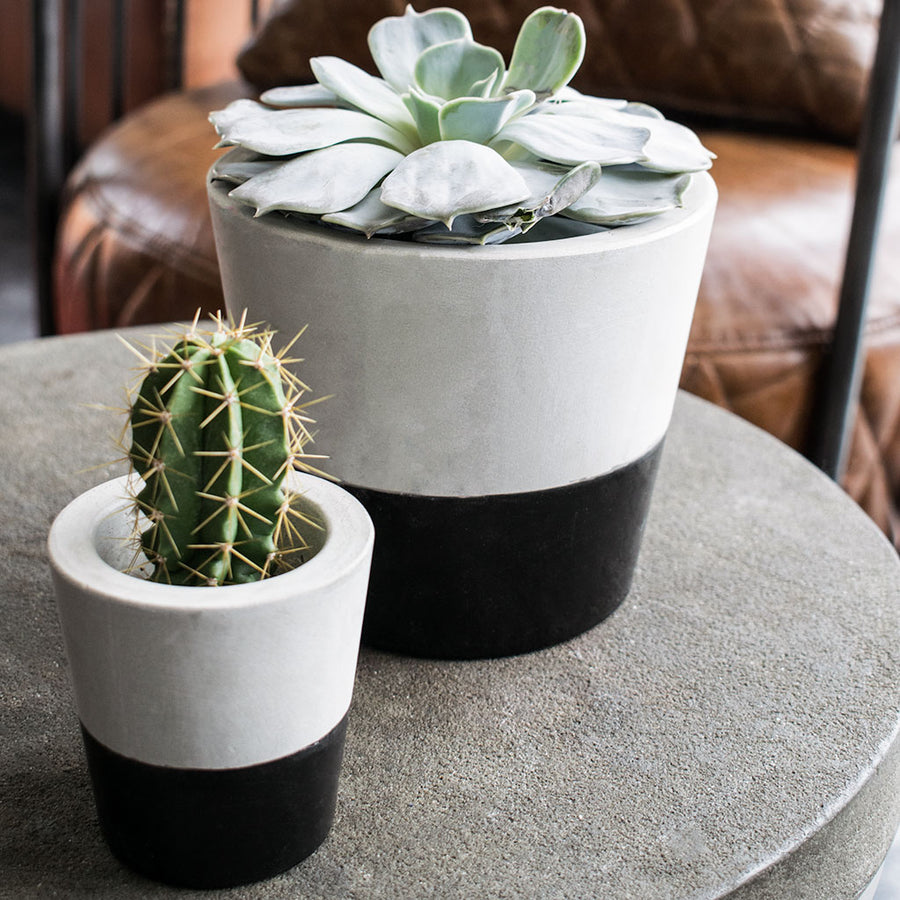Cement Cacti Pot - Black