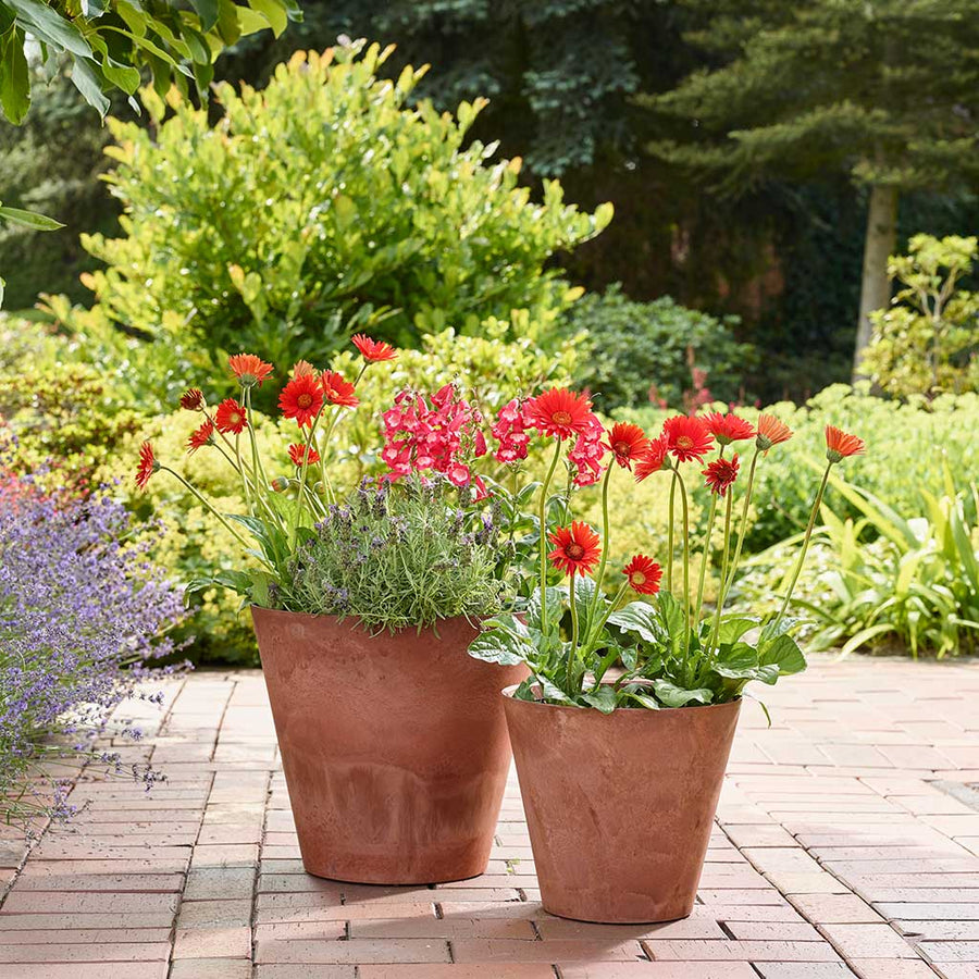 Claire Artstone Plant Pot - Rust - Large XL
