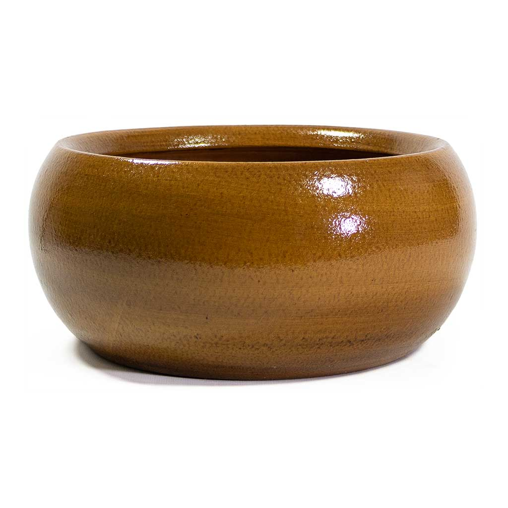 Cresta Plant Bowl - Ochre Yellow
