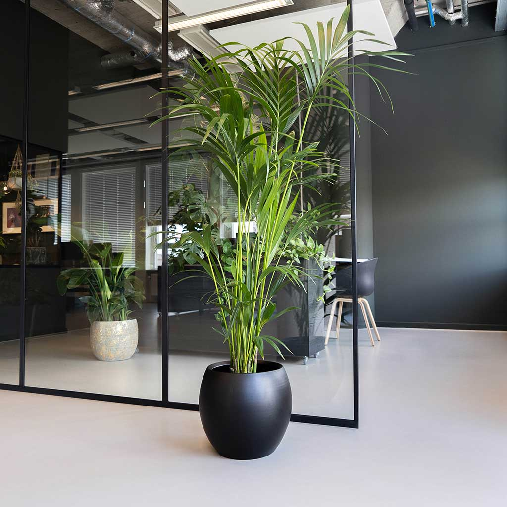 Cresta Plant Pot Matt Black