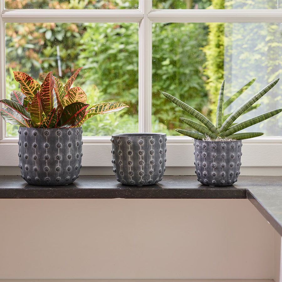 Dots Plant Pot - Greywash 9cm, 12cm, 13cm