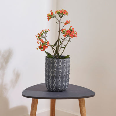 Dots Plant Vase With Plant - Greywash
