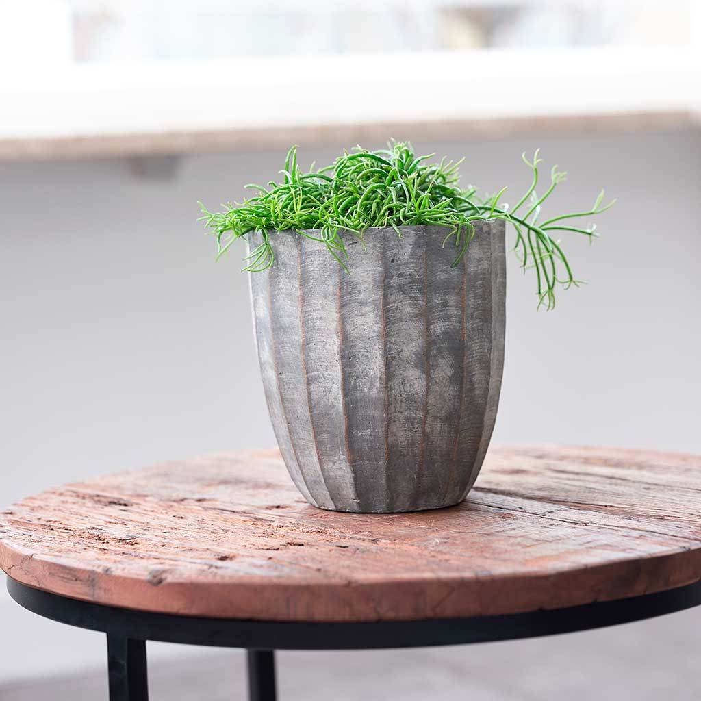 Ellis Plant Pot - Earth - Small