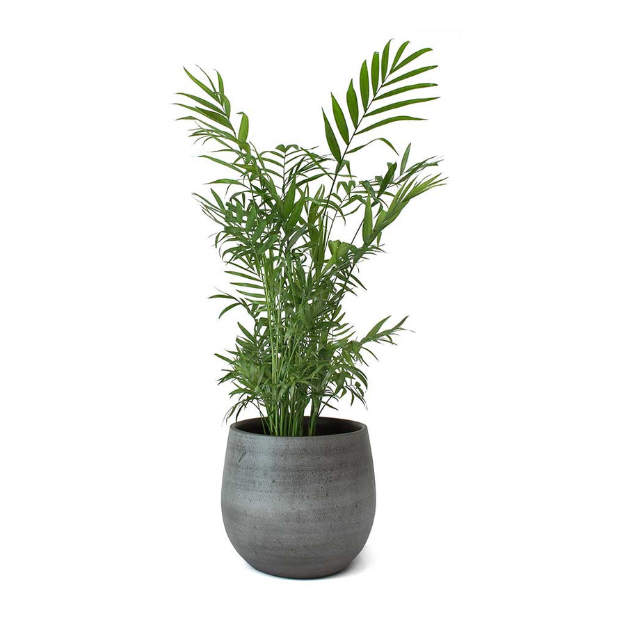 Esra Plant Pot - Mystic Grey