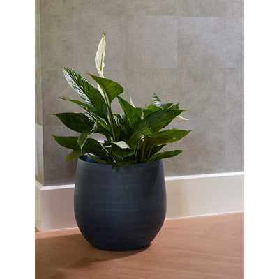 Esra Plant Pot - Dark Blue with Peace Lily