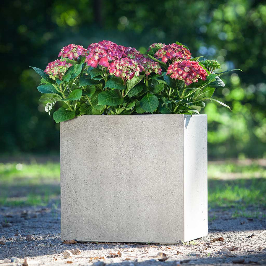 Grigio Cube Planter - Antique White Concrete