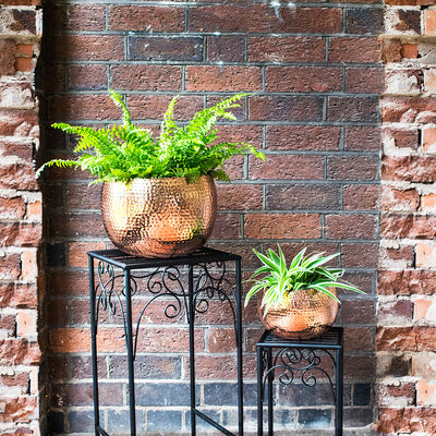 Hammered Bowl - Copper Planters