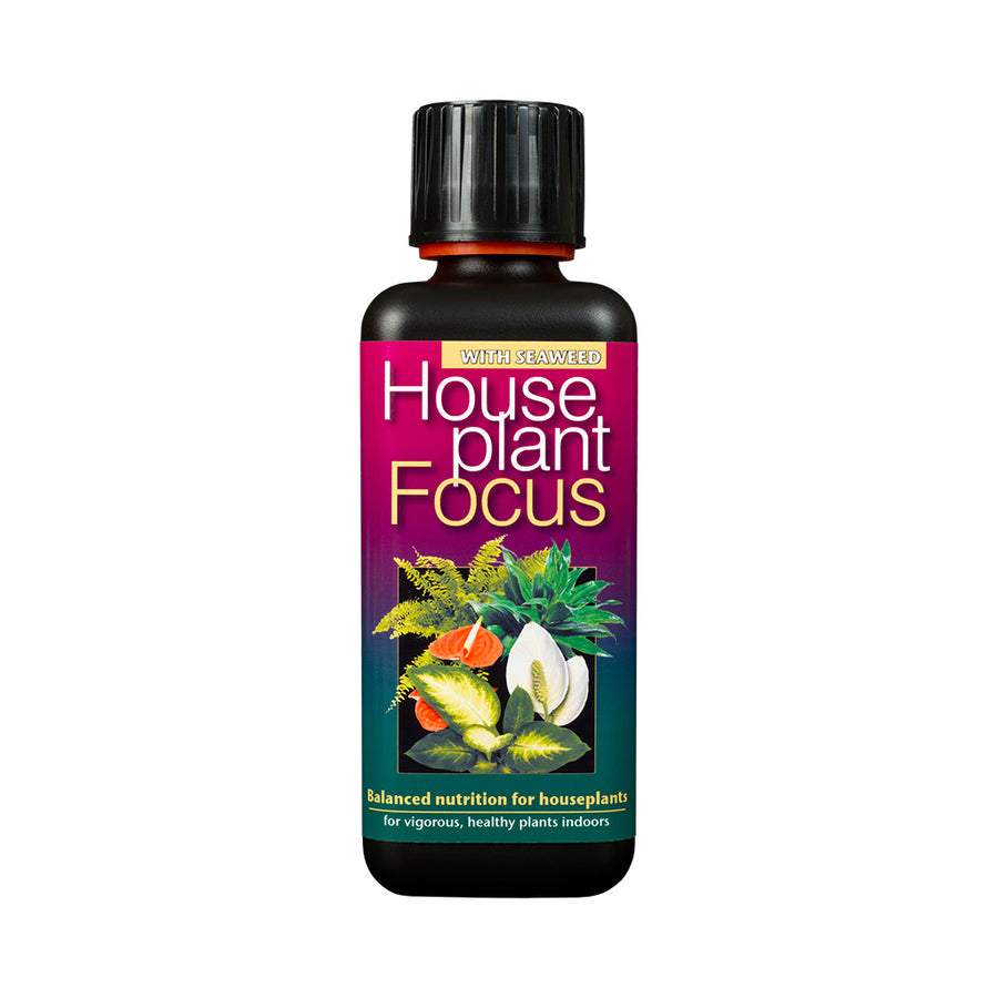 Houseplant Focus Plant Food - 100ml