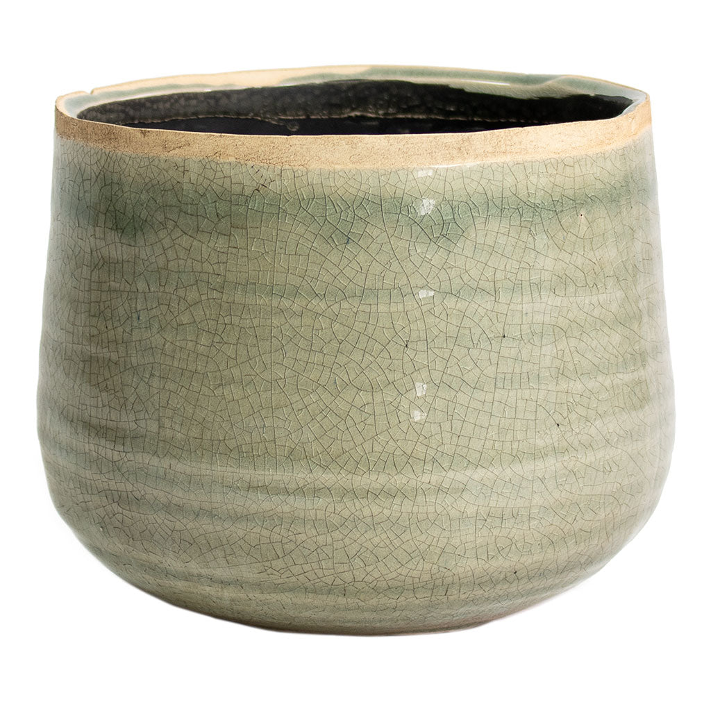 Iris Plant Pot - Mint Large
