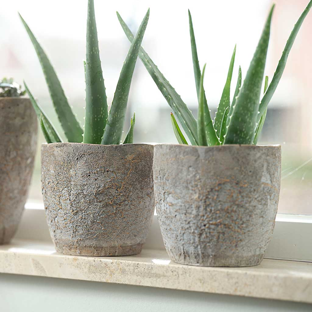 Jens Plant Pot - Grey - Medium