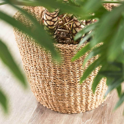 Jip Plant Basket - Natural Seagrass Weave