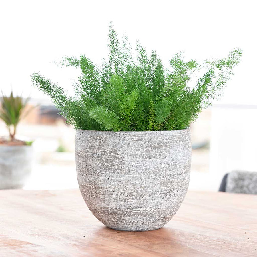 Karlijn Plant Pot - Earth - Small - Medium