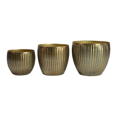 Katy Metal Plant Pots - Set of 3 - Champagne Silver
