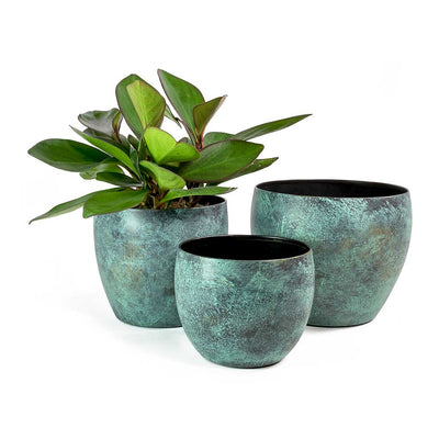 Kian Metal Plant Pots - Set of 3 - Sapphire & Peperomia Red Margin