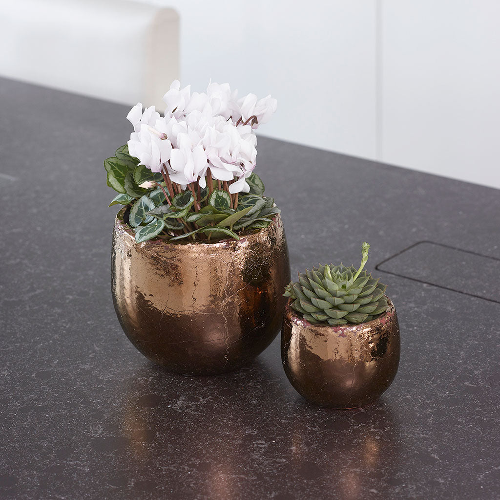 Kirsty Plant Pot Gold Quality Indoor Plant Pots Hortology