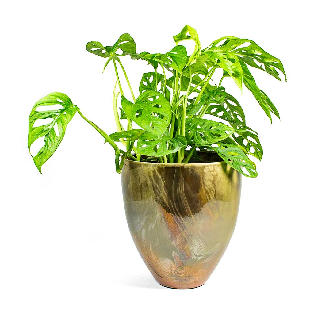 Livin' Beauty Flowerpot - Silver Smooth - 15cm