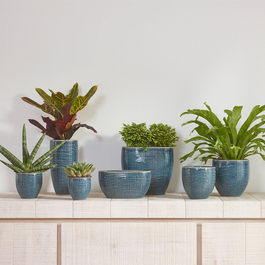 Lotte Oval Plant Bowl - Denim Blue