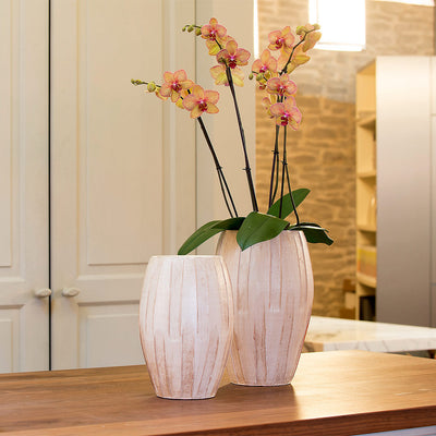 Mirte Plant Vase Cream Quality Indoor Plant Pots Hortology