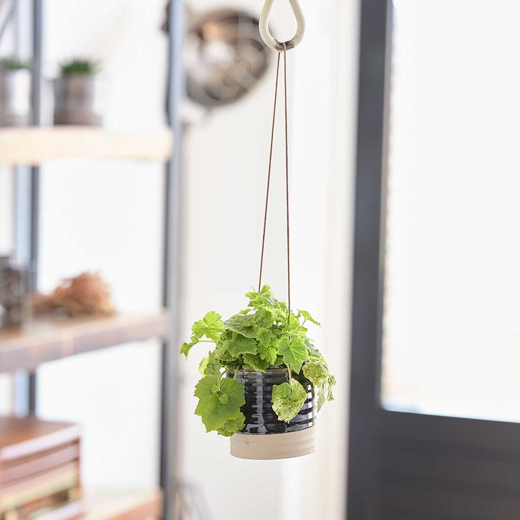Nik Hanging Planters - Set of 2 - Blue