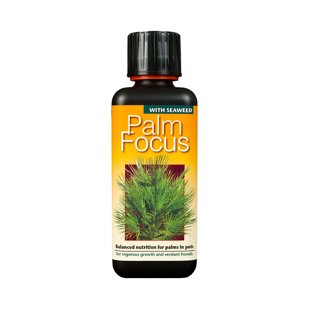 Palm Focus - Plant Nutrition Indoor Palm Trees - 100ml
