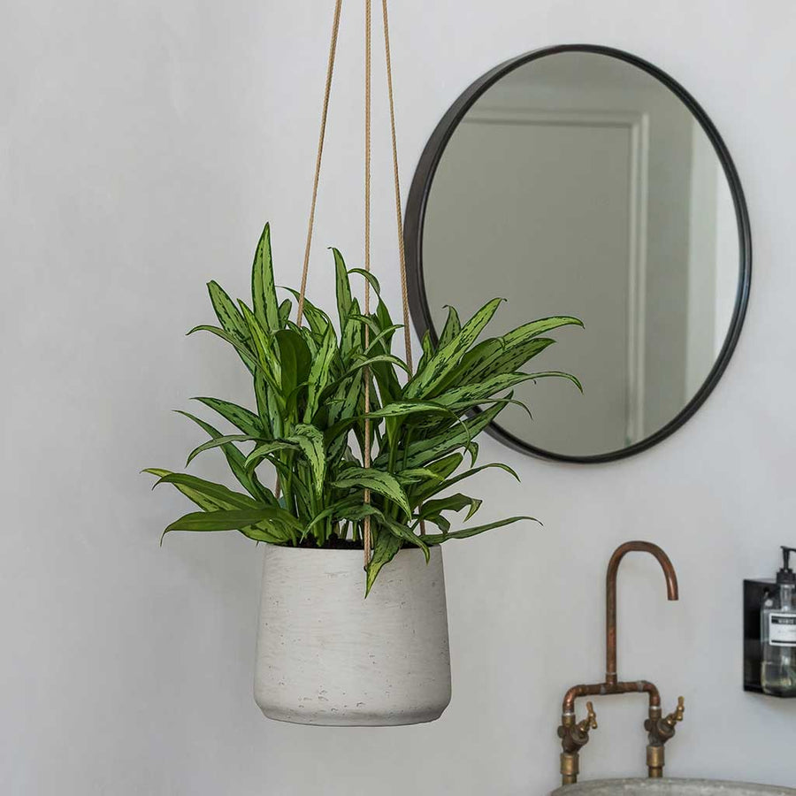 Patt Hanging Plant Pot - Grey Washed - XSmall