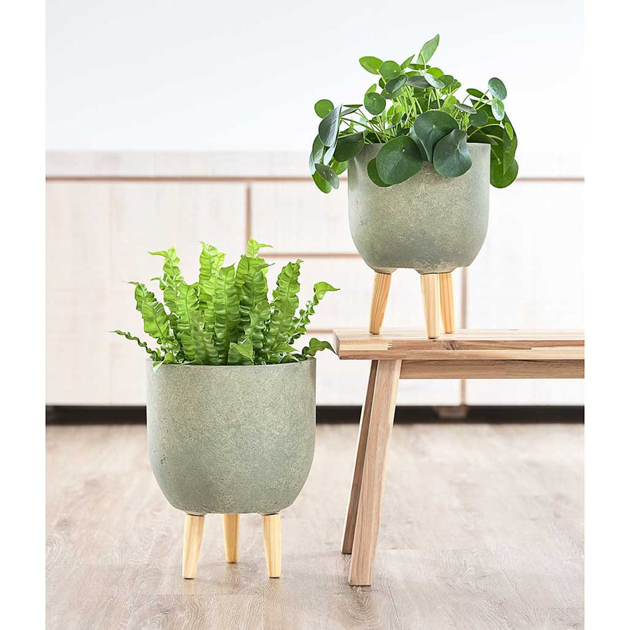 Ruth Plant Pot Stands - Set of Two - Green