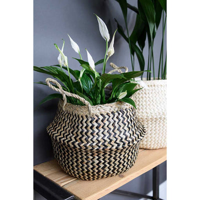 Seagrass Chevron Basket - Black Lined & Peace Lily
