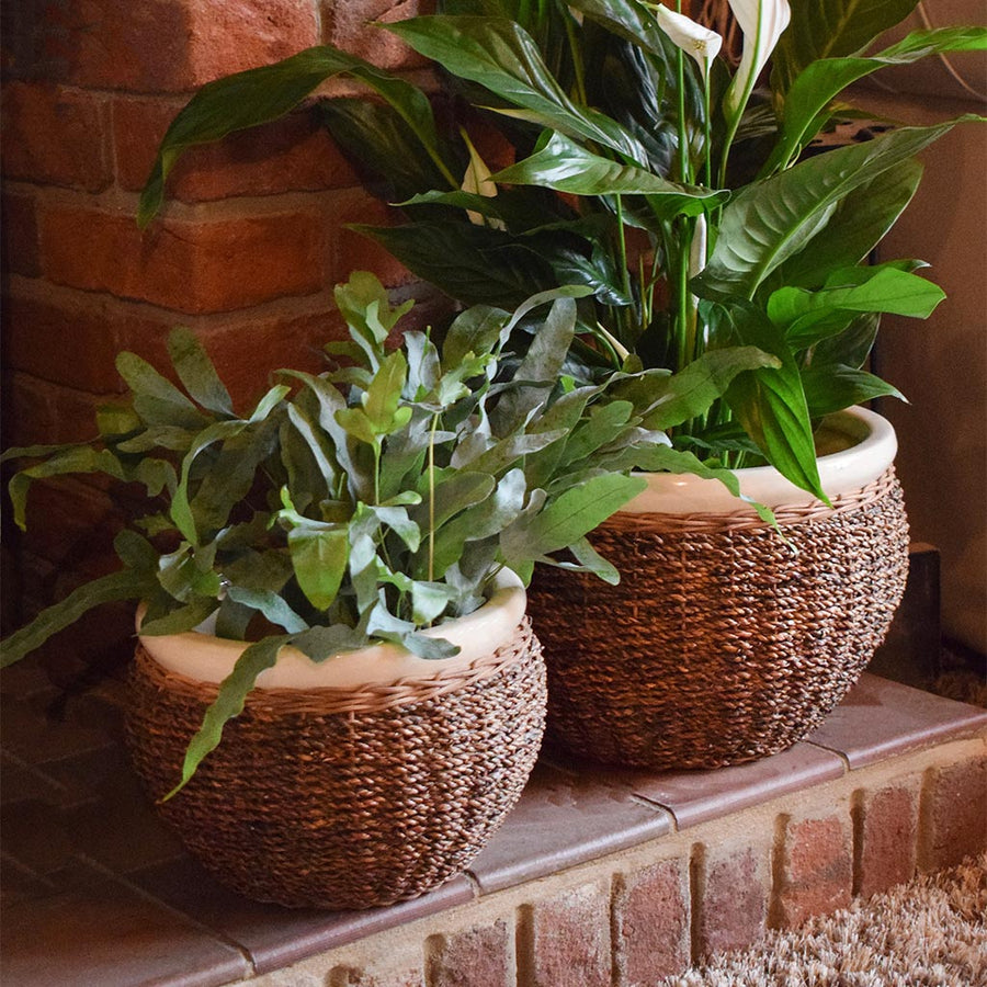Seagrass Cover Plant Pot - Brown 13cm