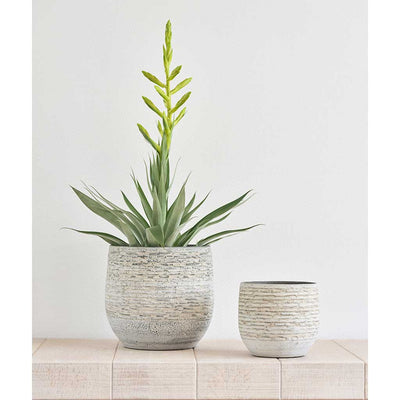 Stijn Plant Pots - Grey - Houseplants