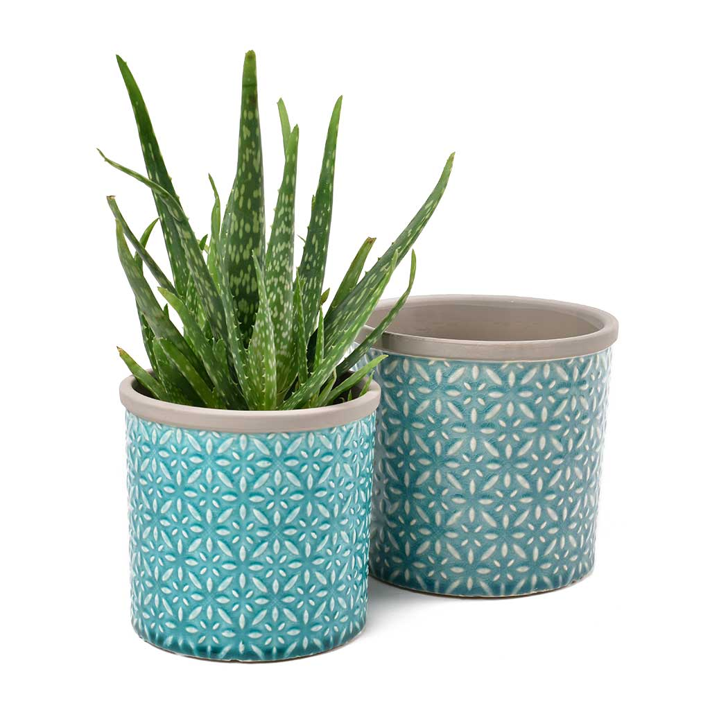 Tuscany Plant Pot Small - Blue