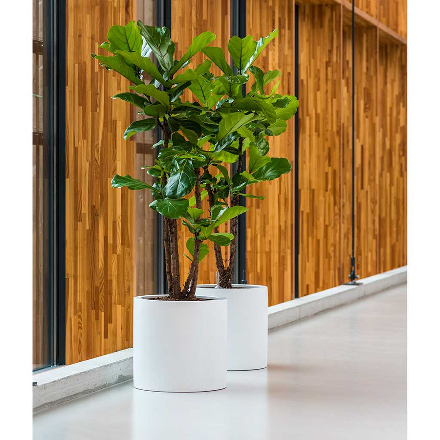 UP2U Round Planter - Matt White - Medium
