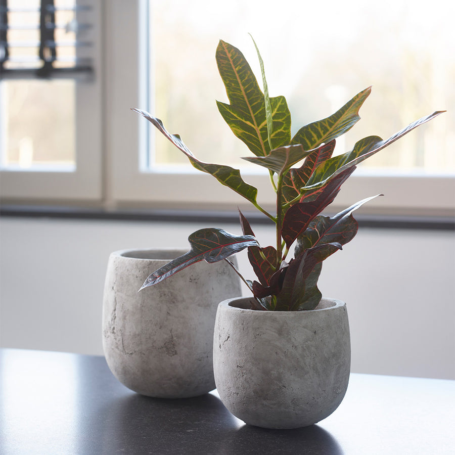Amber Plant Pot   Light Grey 15cm, 18cm