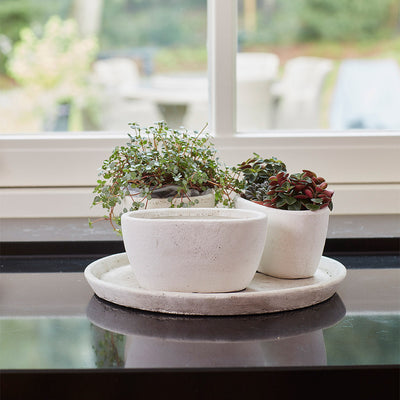 Anne Oval Plant Bowl - Sand